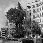 alberghi suburbani  Garbatella-Roma  arch. Innocenzo Sabbatini
