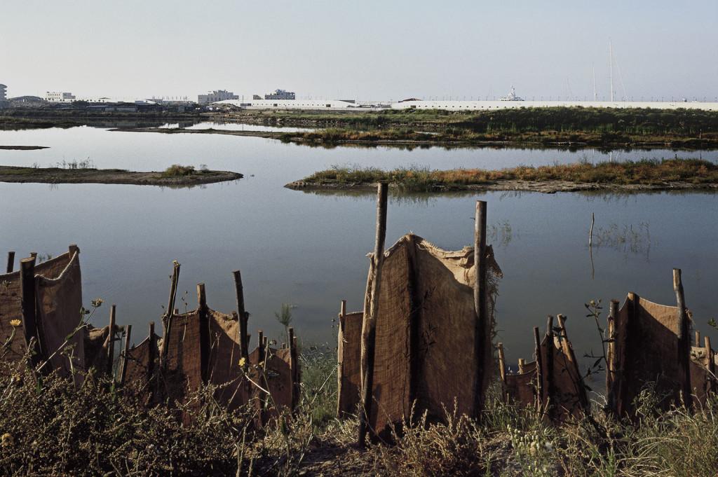 oasi wwf a Ostia