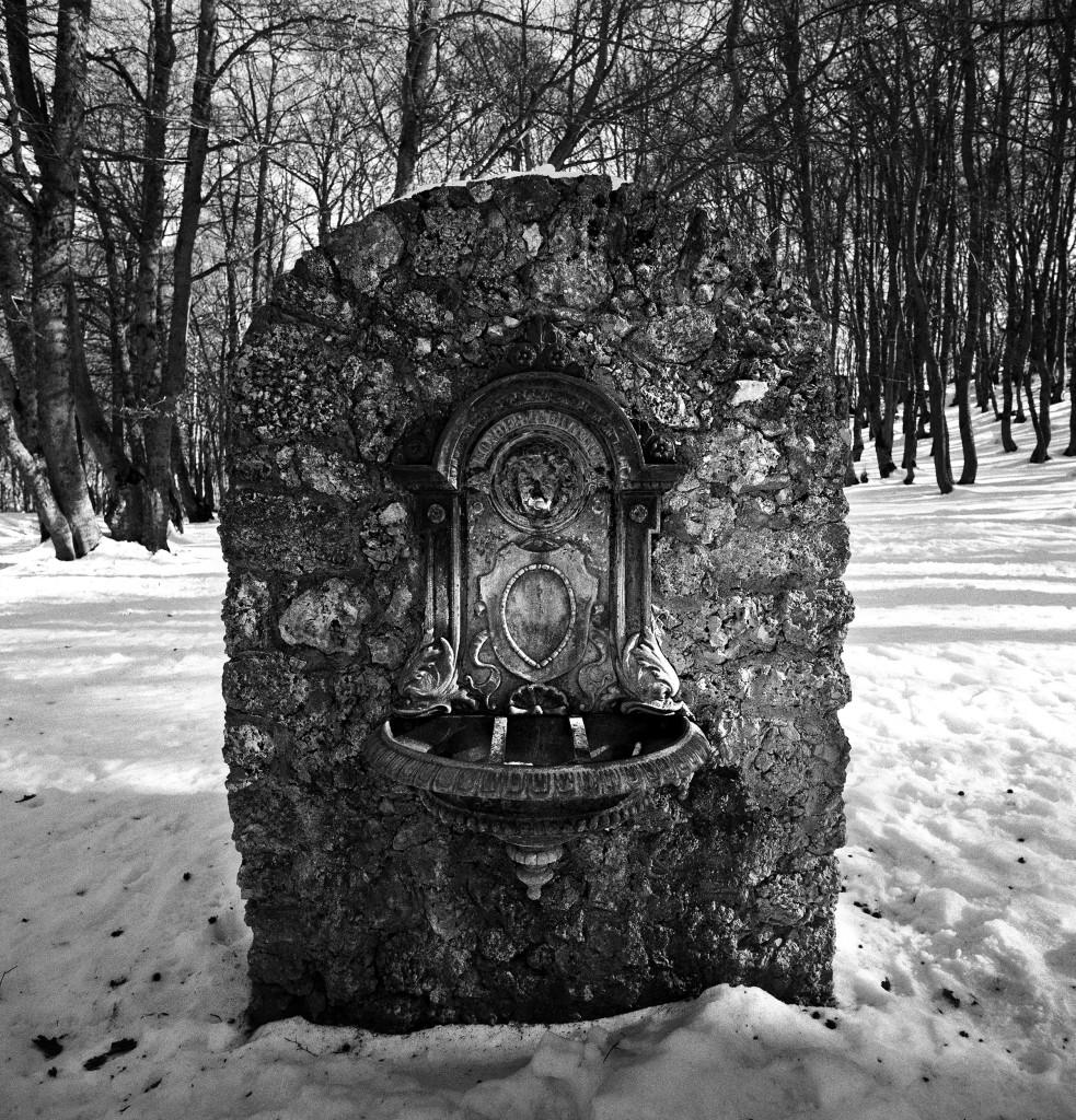 bosco di sant'antonio 4